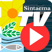 TV Sintaema