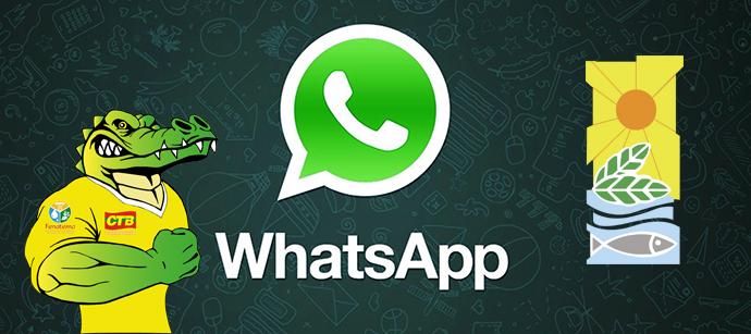 WhatsApp Sintaema-Logo