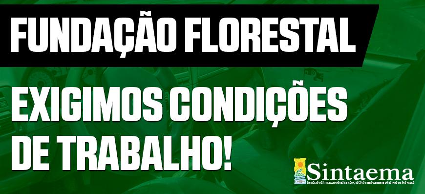 Fundação Florestal – Descaso