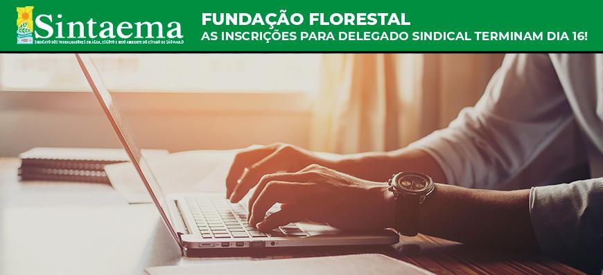 Fundação Florestal | Prazo de inscrição para delegado sindical termina dia 16
