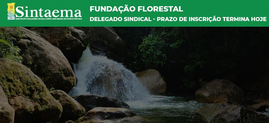 Fundação Florestal | Seja um delegado sindical! O prazo de inscrição termina hoje!